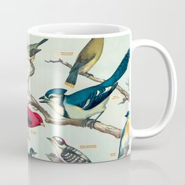 Audubon Birds Vintage Scientific Illustration Encyclopedia Labeled Diagrams Coffee Mug