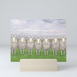 border leicesters in a line Mini Art Print