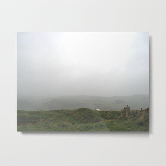 sheep view. Metal Print