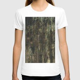 "Gustav Klimt ""The Three Ages of Woman"" (detail 3.) T-shirt"