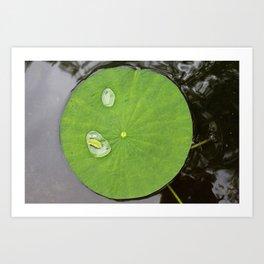 Gathering Water Art Print
