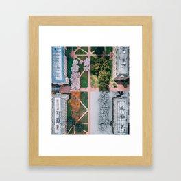 UW Cherry Blossoms: 4 Seasons Framed Art Print