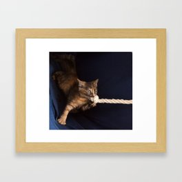 cute striped ginger kitten plays with knotted rope  Framed Art Print