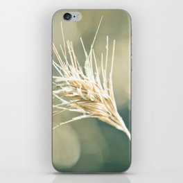 Lightness of Being iPhone Skin