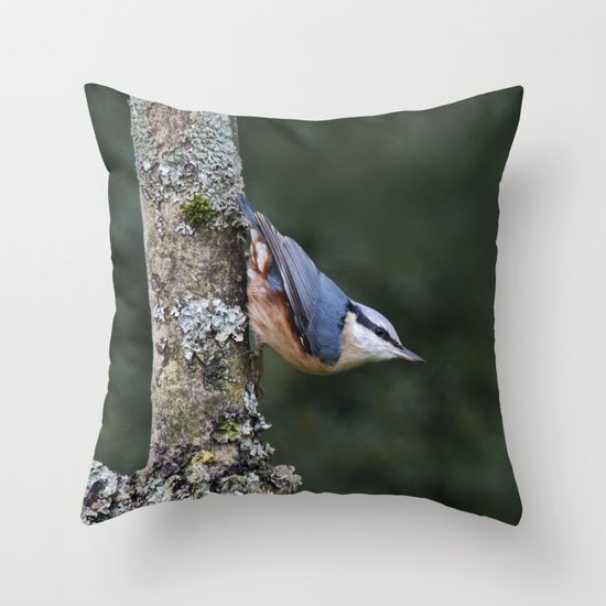 Nuthatch---(Sitta europaea) Throw Pillow