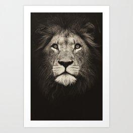 Mr. Lion King Art Print
