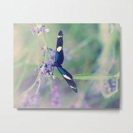 Blue Garden Butterfly Metal Print