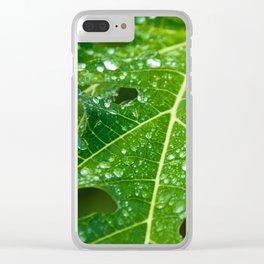 Rain Drops on Green Tropical Papaya Leaf Clear iPhone Case