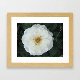 Pure as Snow #1 Framed Art Print