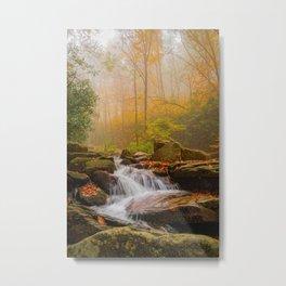Foggy Boone Fork Metal Print