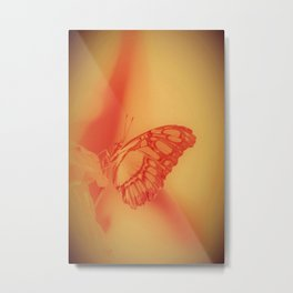 Orange Pastell Butterfly Time Metal Print