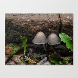 Mushroom Mushroom Canvas Print