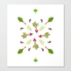 veggies 4 ever Canvas Print