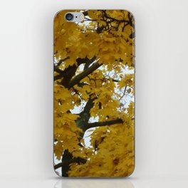 Yellow tree iPhone Skin