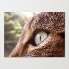 Concrentrated Canvas Print