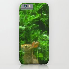 """""""Rabbit Print 2"""" Photography By Hope iPhone Case"""