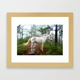 Magical Horse Framed Art Print