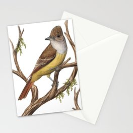 Great Crested Flycatcher (Myiarchus crinitus) Stationery Cards