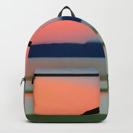 Seagull Sunset Abstract Backpack
