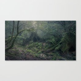 LOST IN THE MYSTICAL FOREST Canvas Print