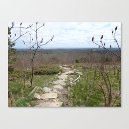 Mt. Agamenticus: The trail at the end of the world Canvas Print