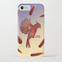 cardinal iPhone & iPod Cases featuring Cardinal by Jody Edwards Art
