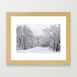 Winter evening in the Moscow forest, Russia Framed Art Print