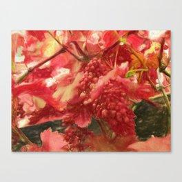 the grapevine Canvas Print