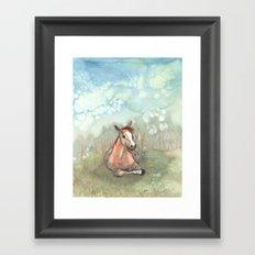 Resting Pony Framed Art Print
