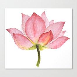 Pink lotus #2 Canvas Print