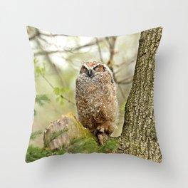Sleeping in the Rain Throw Pillow