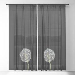 Dandelion flower Sheer Curtain
