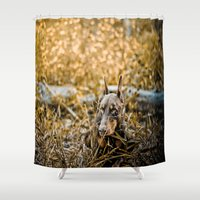 doberman Shower Curtains featuring Camouflage  by Paw Prints By Jamie