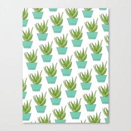 Aloe | Aqua Potted Plants Canvas Print