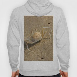 Beach Boy Hoody