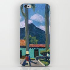 Antigua Park Bench iPhone & iPod Skin