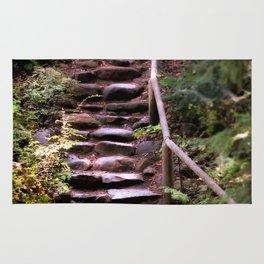 Old Wet Stone Steps Rug
