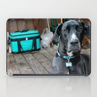 great dane iPad Cases featuring A Great Dane by Rachel Leah