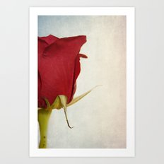 Half-a-rose Art Print