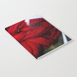 Red Dyeing Notebook