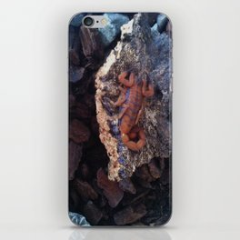 Scorpion iPhone Skin