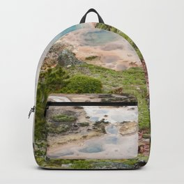 The Great and Wild Basin of Life Backpack