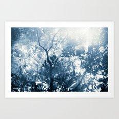 lago de la luz Art Print