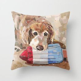 Lucas Throw Pillow