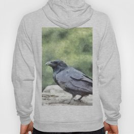 Crows Everywhere Are Equally Black Hoody