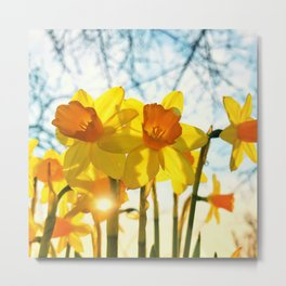 intence yellow Metal Print