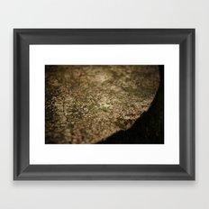 Xilitla Framed Art Print