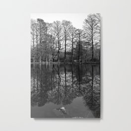 Forest Park Reflections, II Metal Print