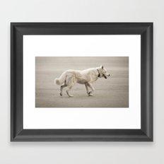 Whitey Framed Art Print