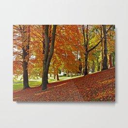Blanket of leaves Metal Print